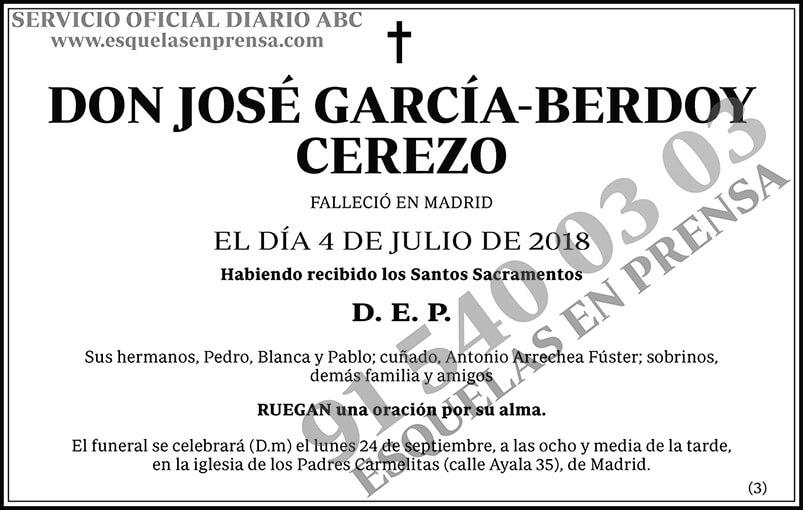 José García-Berdoy Cerezo
